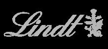 lidnt logo